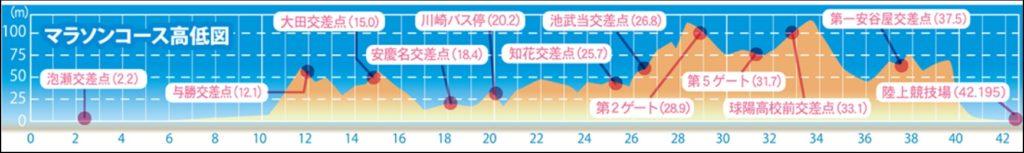 沖縄マラソン高低差